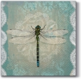0Romantic dragonfly