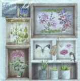 Servilleta decoupage Herbarium new