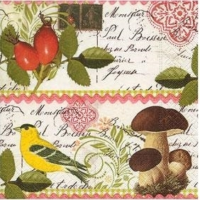 Botanical Postcard