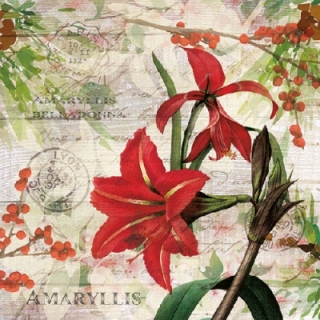 Servilleta decoupage Red Amarylis