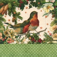 Servilleta decoupage Robins in green