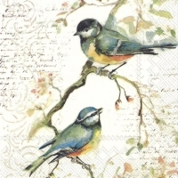 0Servilleta decoupage Birds 25x25