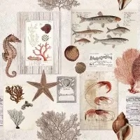 0Servilleta decoupage Sepia sea cream