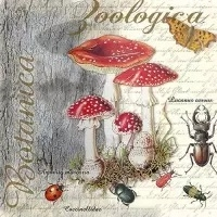 0Servilleta decoupage Fly Agaric