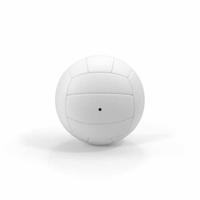 Volleyball WHT8702